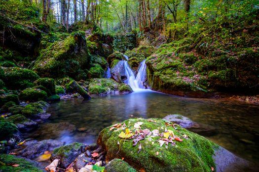 Фото бесплатно зеленый, природа, река