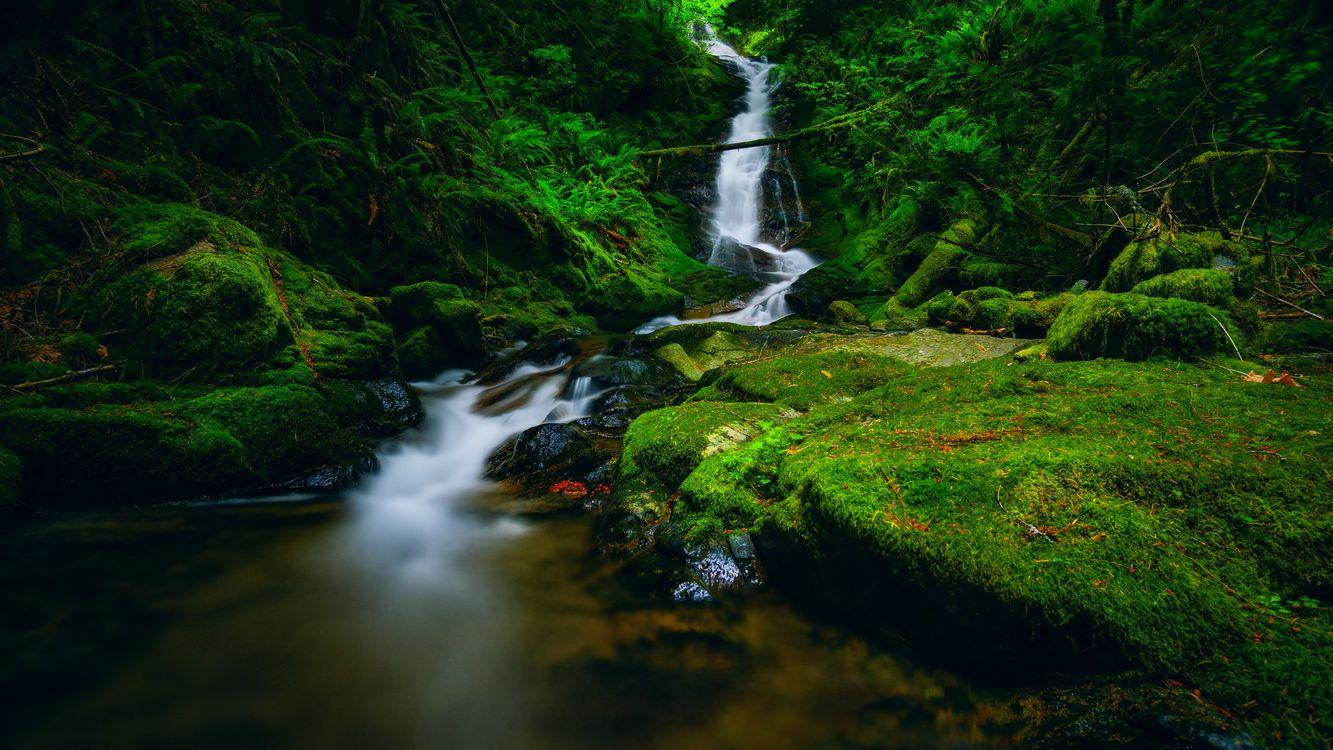 Фото бесплатно водопад, поток, природа - на рабочий стол
