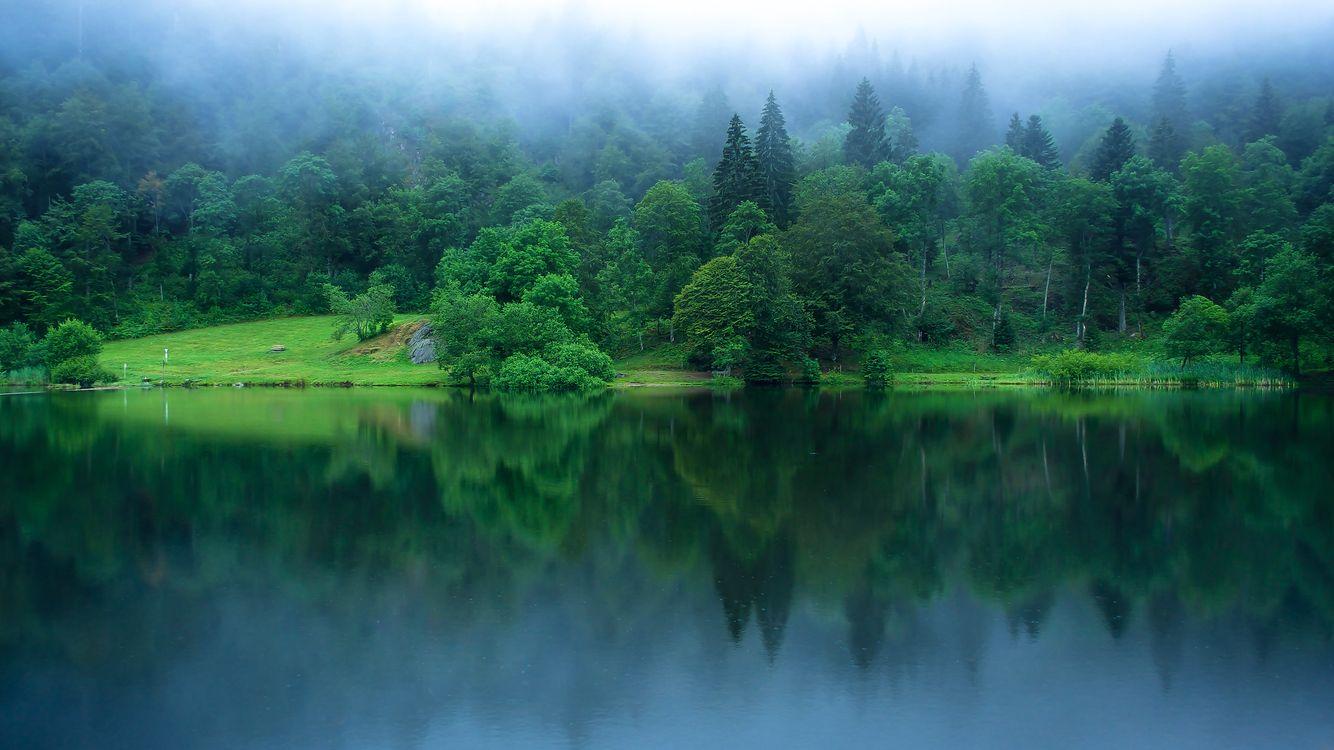 Фото бесплатно Nonnenmattweiher, озеро, Баден - на рабочий стол