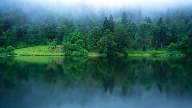 Фото бесплатно Nonnenmattweiher, озеро, Баден