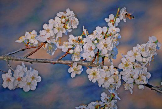 Рисунок вишневой ветки
