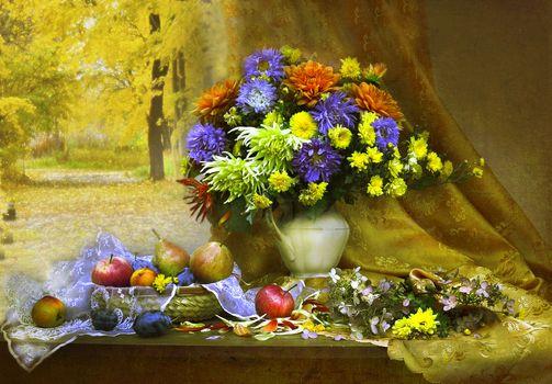 Photo free bouquet, fall, window