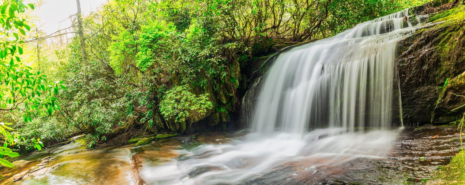 Фото бесплатно North Carolina, National Forest, водопад, река, скалы, деревья, природа, пейзаж, природа
