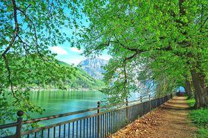 Бесплатные фото Парк,Гмунден,Австрия,дерево,деревья,вода,пейзаж