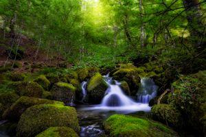 Фото бесплатно поток, пруд, камни
