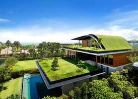 Photo free design, construction, grass