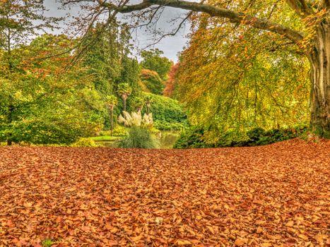 Заставки Шеффилд Парк,Sheffield Park,Англия,Великобритания,осень