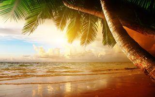 Фото бесплатно пляж, побережье, океан