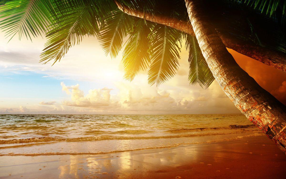 Фото бесплатно пляж, побережье, океан - на рабочий стол