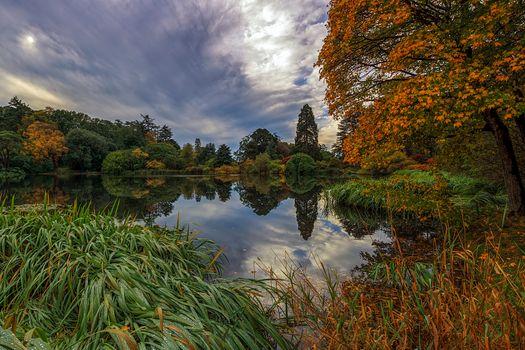 Photo free trees, landscape, northern ireland