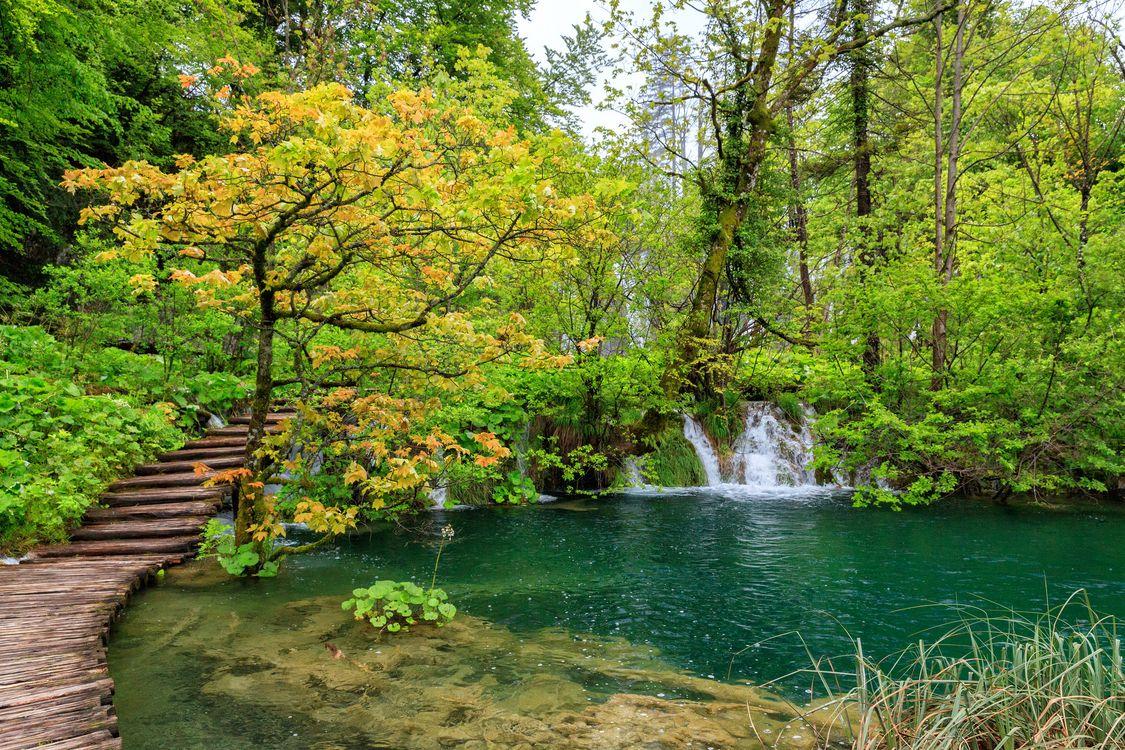 Фото бесплатно Плитвицкие озера, Национальный парк Плитвицкие озера, Plitvice Lakes national park - на рабочий стол