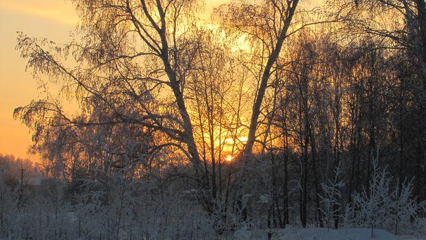 Зимний закат · бесплатное фото