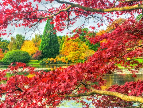 Заставки Шеффилд Парк,Sheffield Park,Англия,Великобритания,водоём,пруд,парк,осень