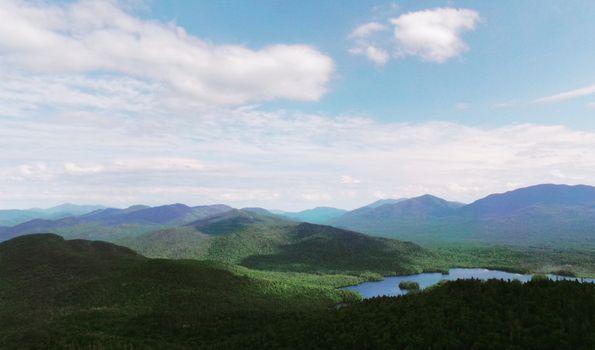 Фото бесплатно пейзаж, лес, пустыня