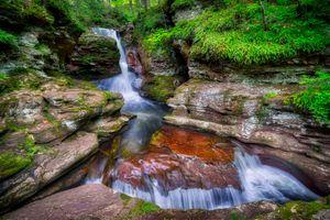 Фото бесплатно лес, поток, природа