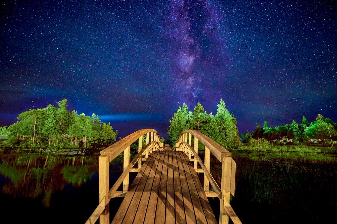 Фото бесплатно пейзаж, млечный путь, деревья - на рабочий стол