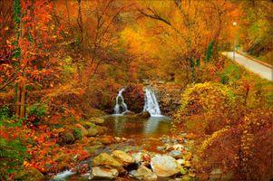 Бесплатные фото осенний водопад,краски осени,осенние краски,осень,дорога,деревья,осенняя листва