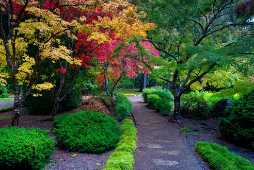 Фото бесплатно парке, Ашленд, штат Орегон
