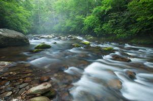 Заставки река,камни,течение,лес,деревья,пейзаж