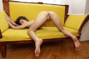 Бесплатные фото Ирина раус,модель,брюнетка,Колумбии,латина,обратно,собачка