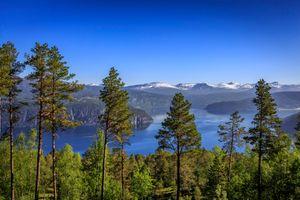 Фото бесплатно Норвегия, Sogn og Fjordane, Утвик, фьорд, море, горы, деревья, пейзаж