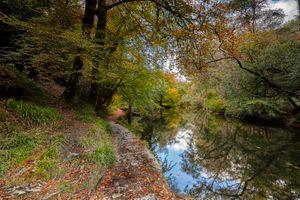 Бесплатные фото осень,парк,водоём,река,лес,деревья,природа