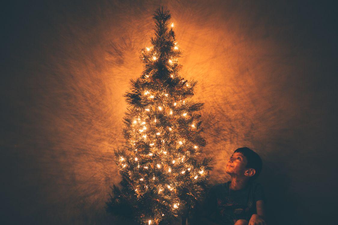 Фото бесплатно задний план, мальчик, рождество, рождественские украшения, рождественские огни, рождественская елка, рождественские обои, крупным планом, темно, украшать, украшение, декоративный, подробно, вечер, вечнозеленый, новый год