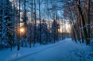 Заставки тропинка, закат, снег