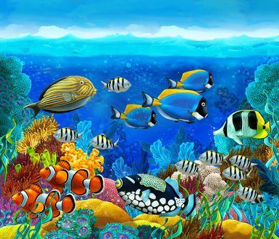 Заставки море, рифы, рыбы