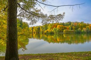 Фото бесплатно Москва, осень в Москве, осенние цвета