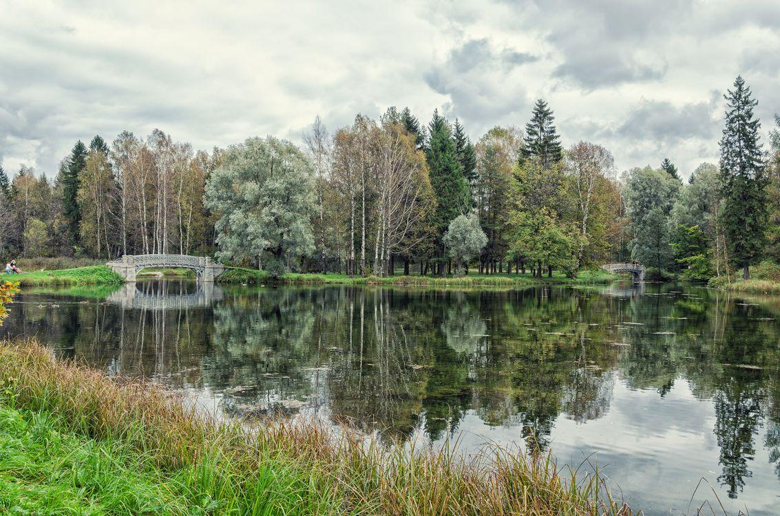 Мосты Серебряного озера в Гатчине (1) · бесплатное фото