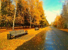 Фото бесплатно парк, аллея, осень