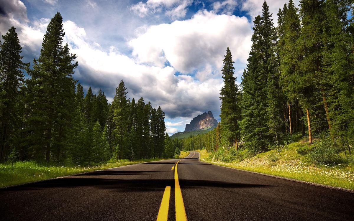 Фото бесплатно Канада, дорога, разметка, лес, облака, природа, деревья, природа - скачать на рабочий стол