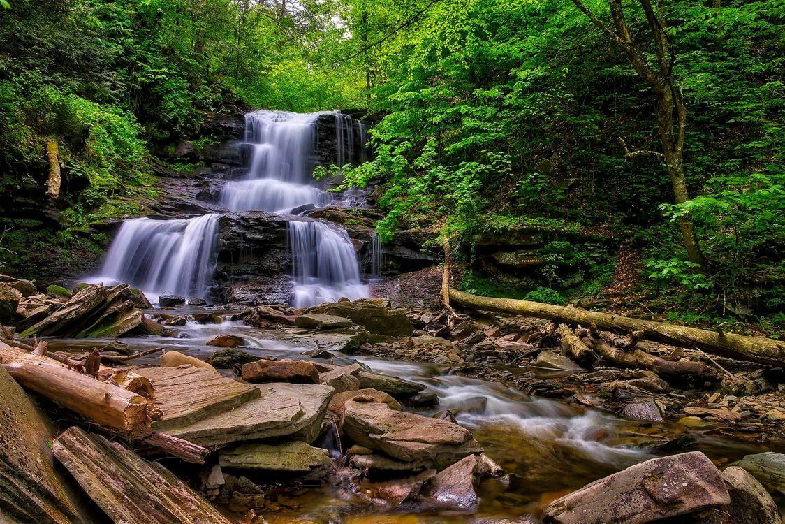 Фото бесплатно пейзаж, пруд, деревья - на рабочий стол