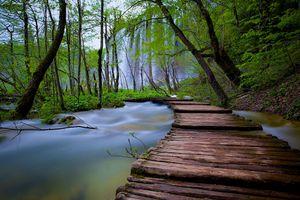 Бесплатные фото Плитвицкие озера, Хорватия, водопад, деревья, пейзаж, Национальный парк Плитвицкие озера