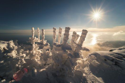 Зима на Черном море · бесплатное фото