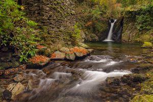 Ручей и водопад осенью · бесплатное фото