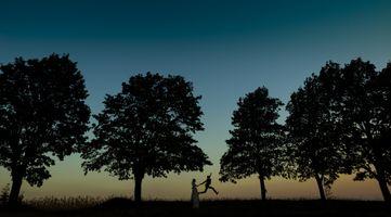 Заставки сумерки, силуэты, поле деревья