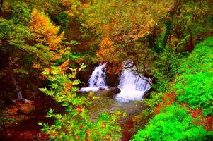 Фото бесплатно магическая река, осень, лес