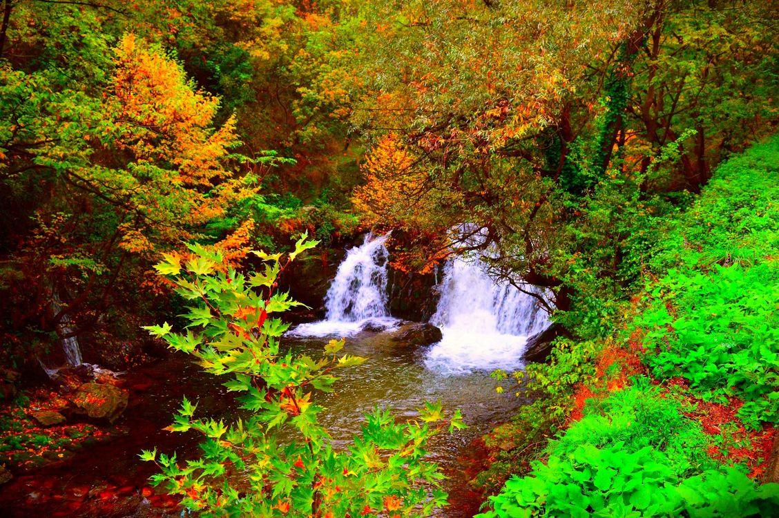 Фото бесплатно магическая река, осень, лес, камни, деревья, природа, пейзаж, природа