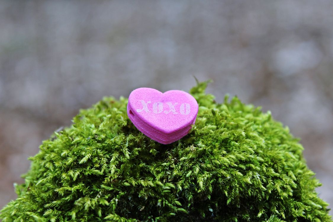Фото бесплатно сердце, xoxo, любовь - на рабочий стол