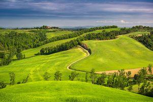 Фото бесплатно поля, Италия, деревья