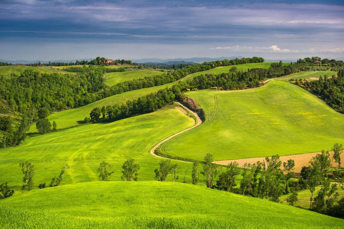 Фото бесплатно Tuscany, Italy, поля, холмы, деревья, дорога, пейзаж, пейзажи