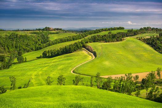 Бесплатные фото Tuscany,Italy,поля,холмы,деревья,дорога,пейзаж