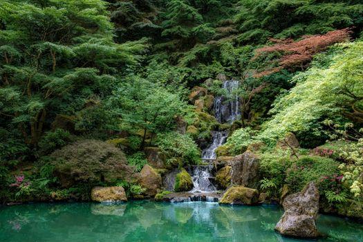 Фото бесплатно лес, Парк, штат Орегон