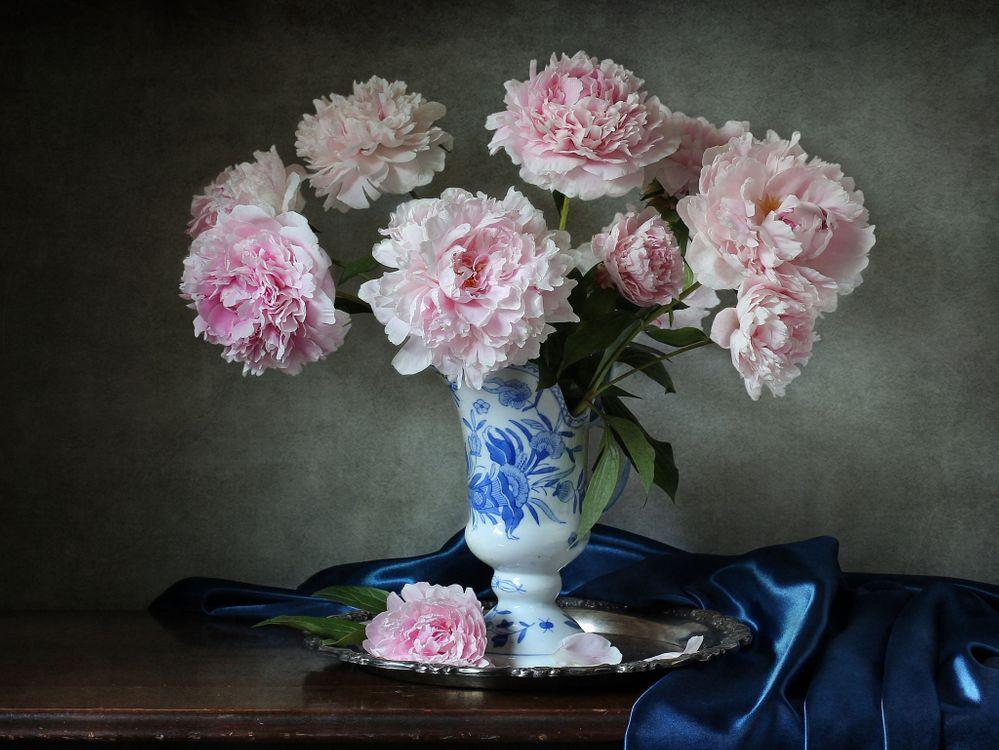 Фото бесплатно натюрморт, ваза, цветы, стол, пионы, цветы