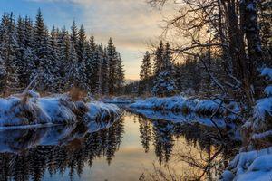 Бесплатные фото закат,зима,лес,деревья,река,отражение,снег