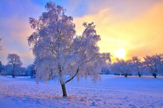Фото бесплатно зима, закат солнца, рассвет