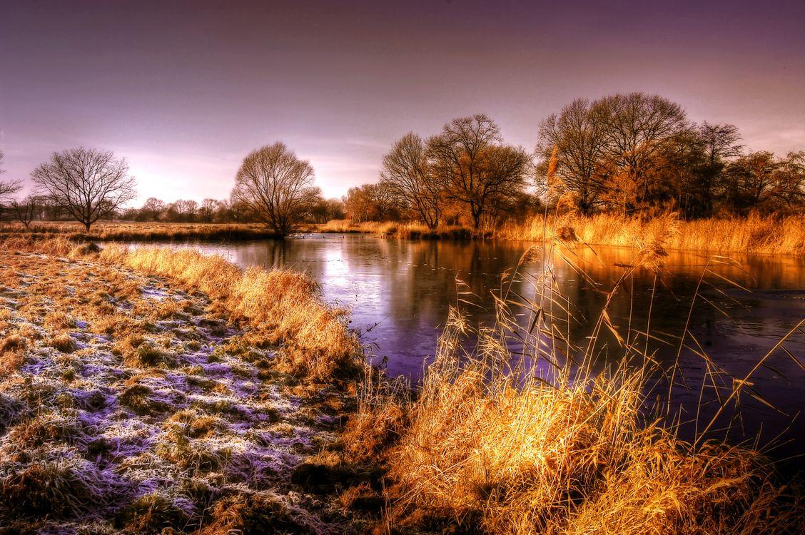 Фото бесплатно пруд, солнце, вода, природа, озеро, небо, пейзаж - на рабочий стол