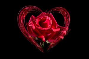 Бесплатные фото сердце,роза,любовь,день святого валентина,день матери,спасибо,роман
